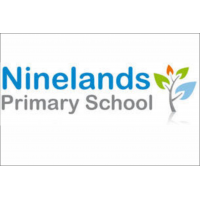Ninelands Primary School Leavers Hoodie 2021